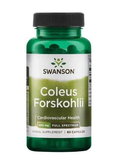 Swanson Vollspektrum Coleus Forskohlii 400 mg 60 Kapseln