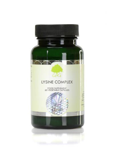 G&G VITAMINS L-Lysin 400MG mit Zink und Vitamin C 60 CAPSULES