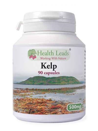 Health Leads Kelp 500 mg x 90 Kapseln